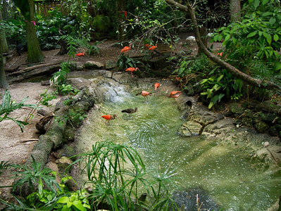 lowry zoo