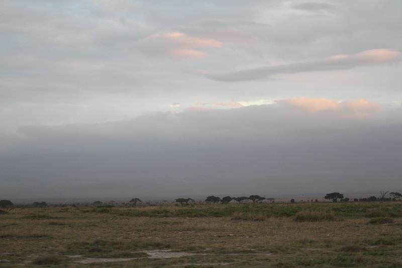 Kenya 2019 #2 1635.JPG