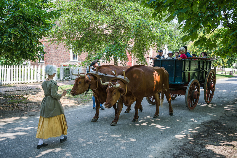 ©2011-2019 Dennis A. Mook; All Rights Reserved; Colonial Williamsburg-700724.jpg