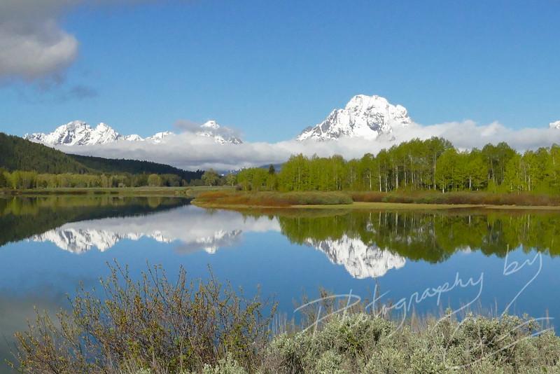 Teton Heaven