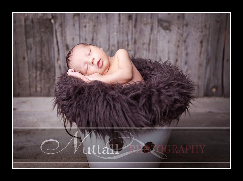Noah Newborn 55.jpg
