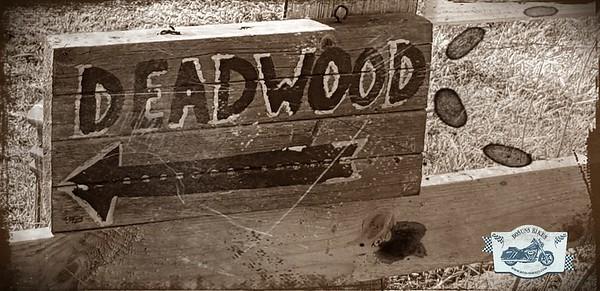 Kingsfold deadwood