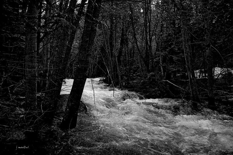 swift water 6-20-2011.jpg