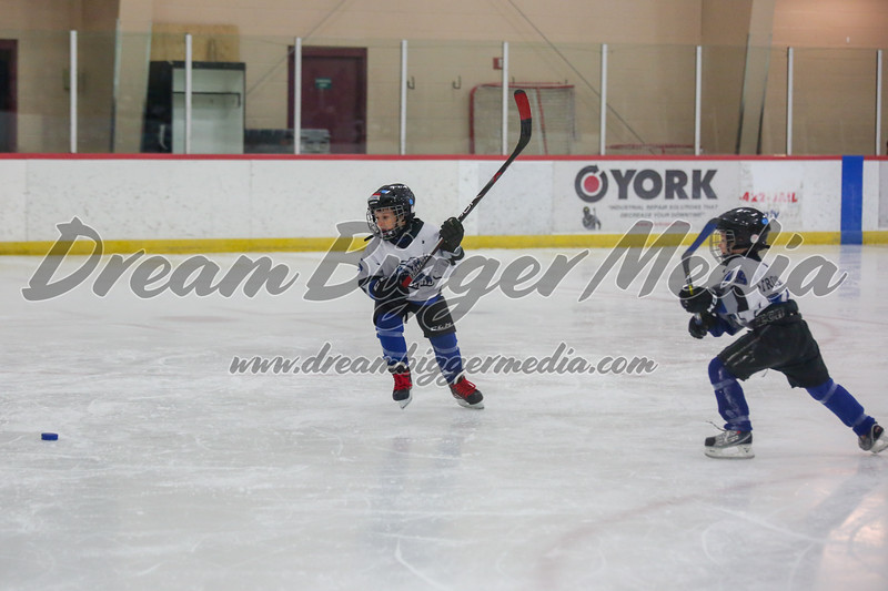 Blizzard Hockey 111719 7063.jpg