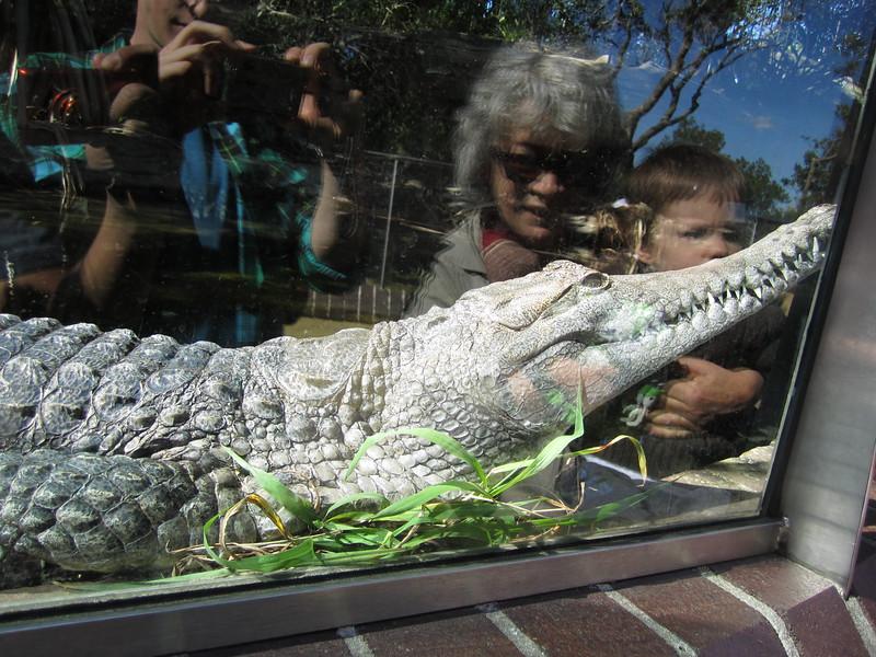 Sydney - Sydeny Zoo-17.JPG