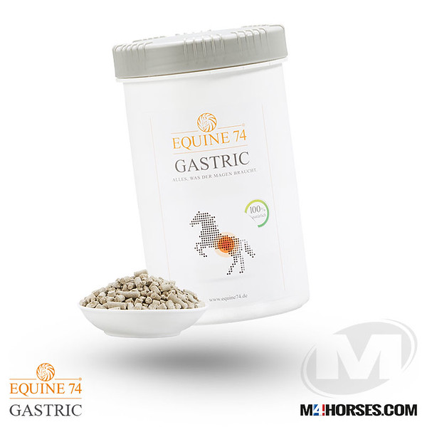 M4PRODUCTS-EQUINE.jpg