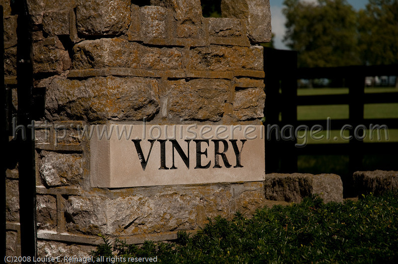 VineryKYSept-4804.jpg