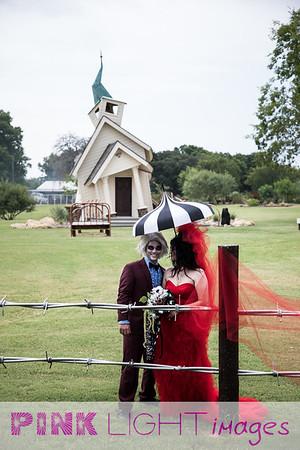 WEDDING: Trisha & Scott  - Beetlejuice Theme at Lizzy Gator
