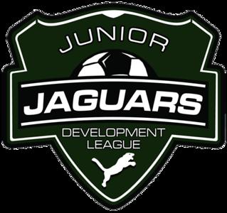 u10 Girls Michigan Jaguars