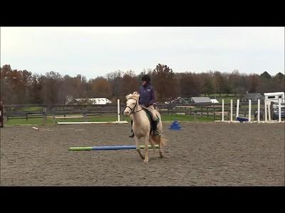 TSRC 2018-11-07 Tru Liberty Farm Video