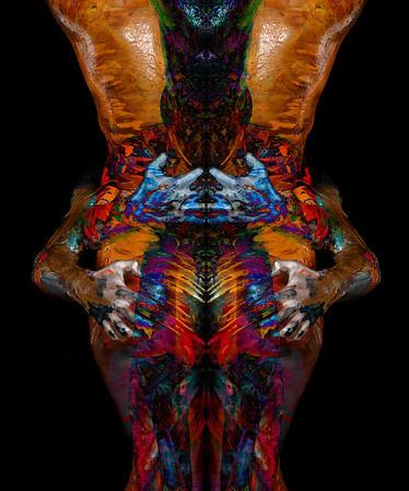 Transflexions Show 2013
