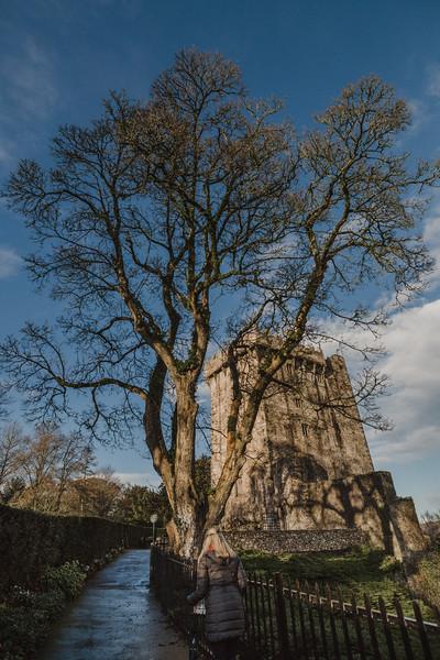 Wyndham at Blarney_0039.jpg