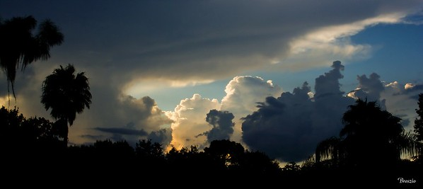 Clouds & Skyscapes