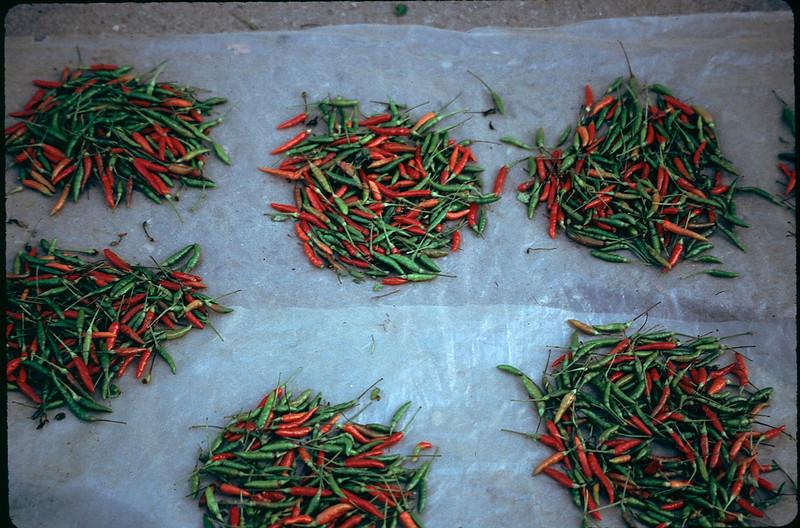 hot chilis