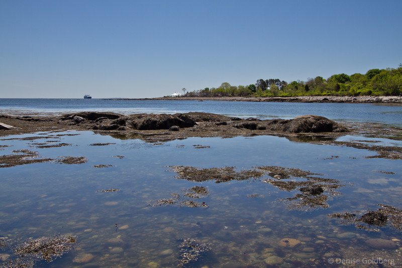 the colors of the day are blue and green at Odiorne Point State Park, Rye, NH