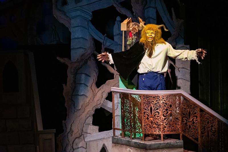 Beauty and the Beast 2018-11-08-65115.jpg