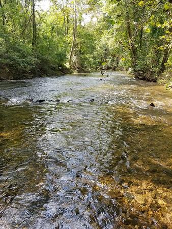 5W Creek