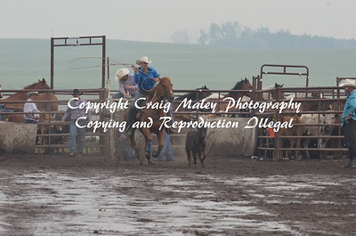 PERF CALF ROPING 07-05-15