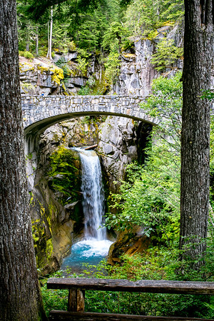 Christine Falls-1, Washington