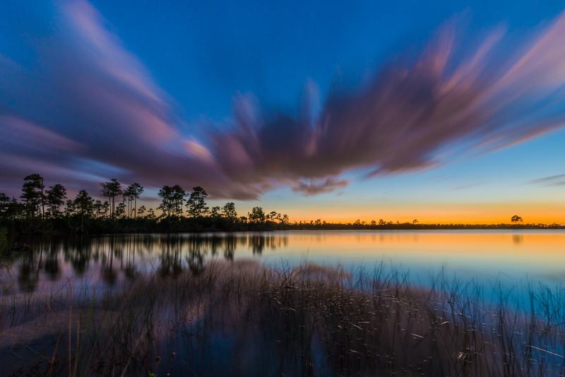 Everglades (24 of 37).jpg