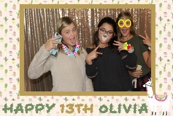 2019 Olivia's 13th Birthday Celebration