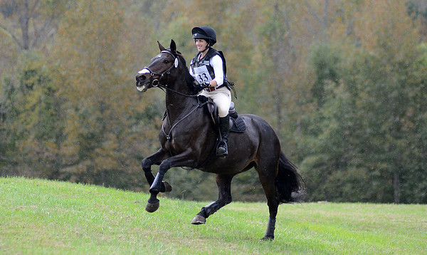 ERIN RILEY AND COVERT AFFAIR #33