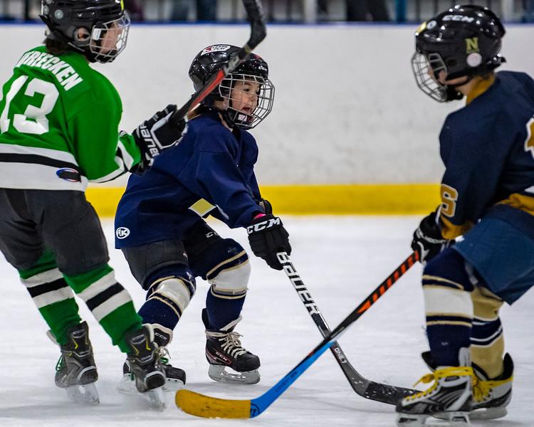 2019-02-04-Ryan-Naughton-Hockey-102.jpg
