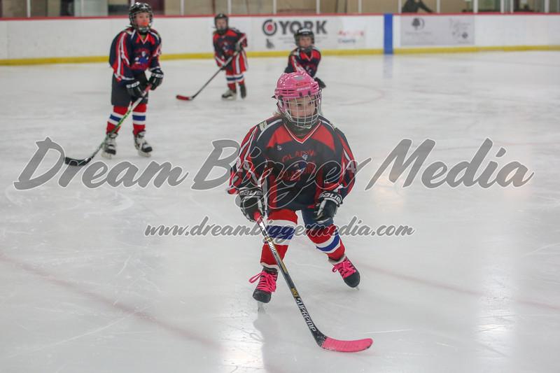 Blizzard Hockey 111719 7114.jpg