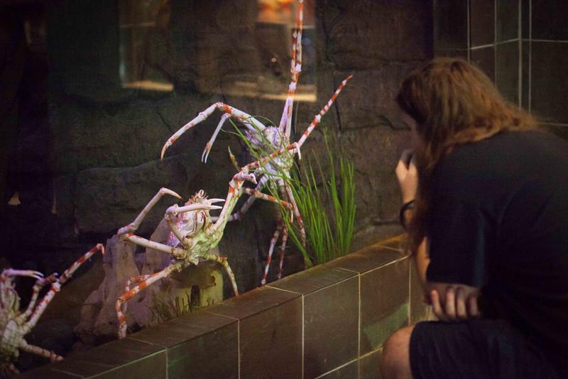 2014 10 25 Dallas World Aquarium-45.jpg