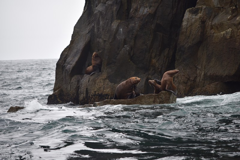 Alaska - 50.jpg