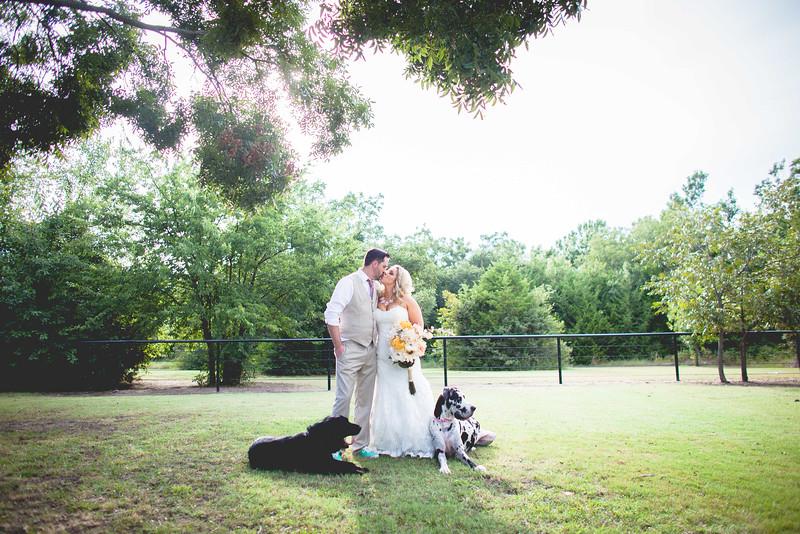 2014 09 14 Waddle Wedding - Bride and Groom-780.jpg