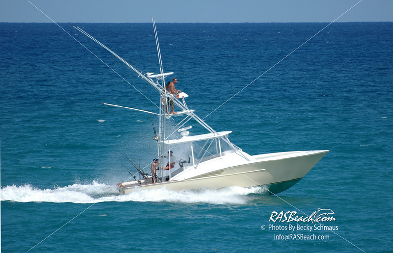 Fish-Boat_DSC_0356.JPG