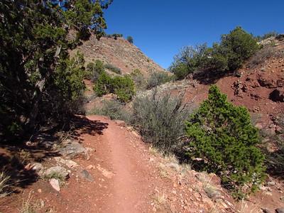 Placitas Trails Hike-East Side  3-23-20