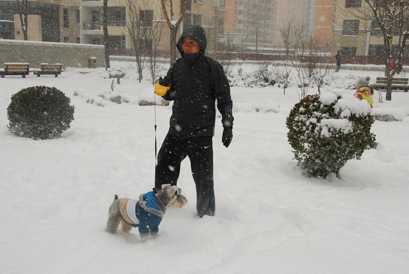 [20100103] 1st 2010 Snow in Beijing (54).JPG