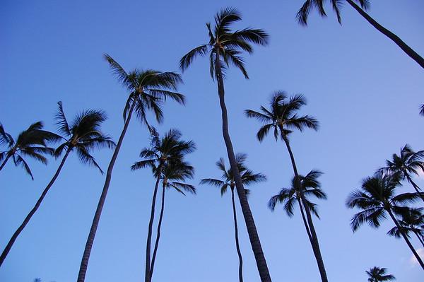 Kauai HW, March 2010