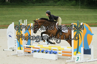 The Ridge at Riverview Schooling Show July 13, 2014