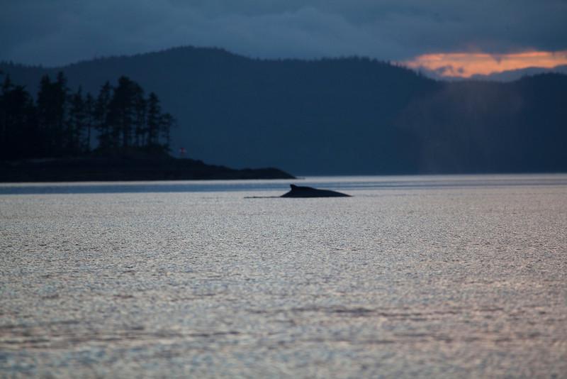 Alaska-159.jpg