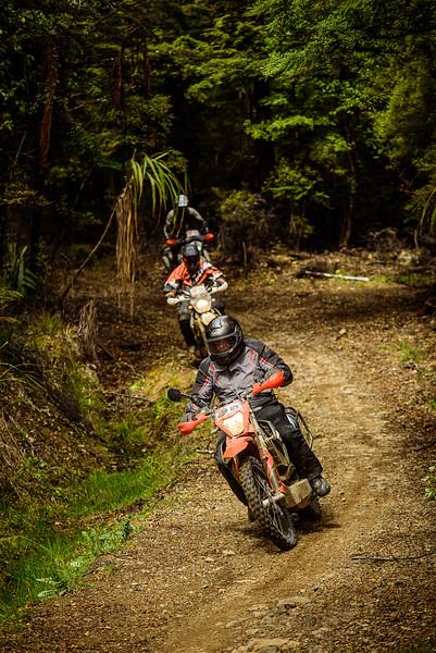 2019 KTM New Zealand Adventure Rallye (1305).jpg