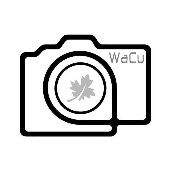 wacu camera graphic.jpg