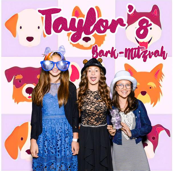 Taylors pawmitzvah-20726.jpg