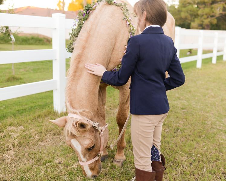 Equestrian Birthday Tea Tikkido (66 of 84).JPG