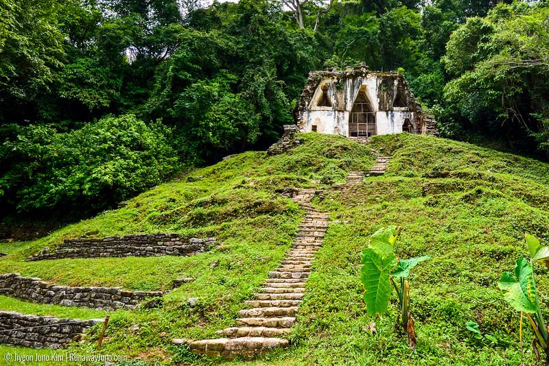 08.29_Palenque-0504.jpg