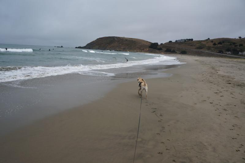 at the beach 2016 156.JPG