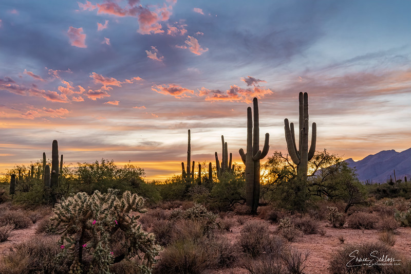 Sabino Sunset 8-17-2019b-2.jpg