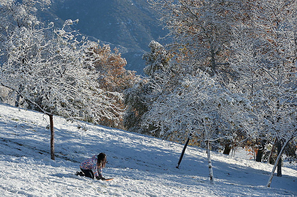 . Residents of Yucaipa, Calif., awoke Wednesday December 31, 2014 to a blanket of snow left behind by Tuesday\'s winter storm with weather reports claiming three to five inches of snow. (Staff photo by Rick Sforza/The Sun)