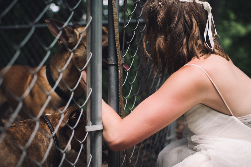 Pittsburgh PA WV Harpers Ferry MD DC Elopement Wedding Photographer - Ford 658.jpg