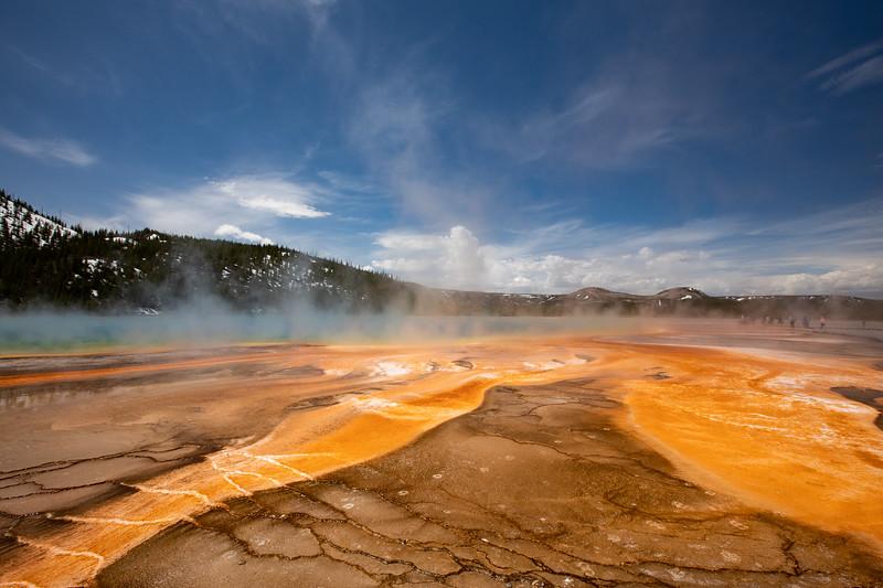 WVWS_Yellowstone-2097.jpg