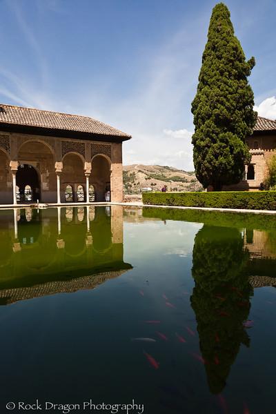 alhambra-111.jpg