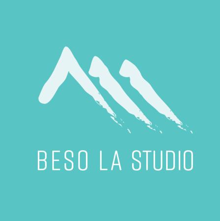 BESOLA LOGO SQ.png