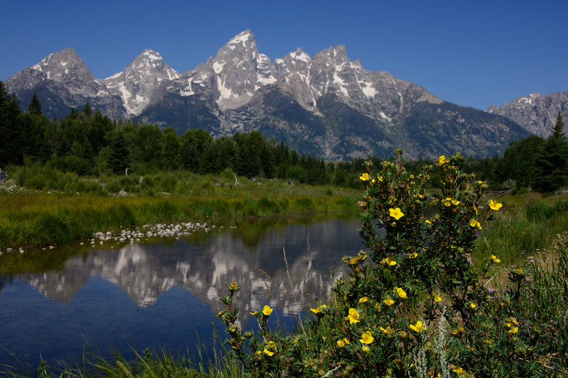Tetons-Take-Two-123.jpg
